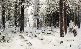 Ivan Shishkin | Winter | Giclée Canvas Print