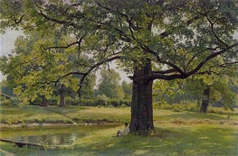 Ivan Shishkin   Oak Trees in Old Peterhof   Giclée Canvas Print