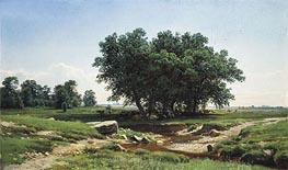 Ivan Shishkin   Oaks   Giclée Canvas Print