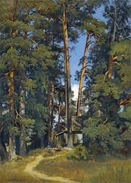 Ivan Shishkin | Woodland Grove, undated | Giclée Canvas Print