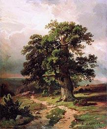 Ivan Shishkin | Oaks | Giclée Canvas Print