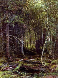 Ivan Shishkin | Backwoods, 1872 | Giclée Canvas Print