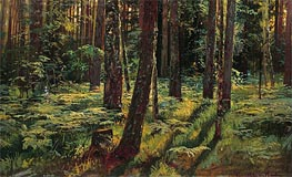 Ivan Shishkin | Ferns in the Forest. Siverskaya | Giclée Canvas Print