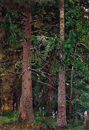 Ivan Shishkin | Spruce Forest, c.1889/90 | Giclée Canvas Print