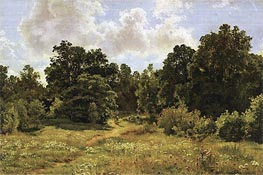 Ivan Shishkin | Edge of Deciduous Woods, 1895 | Giclée Canvas Print