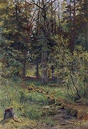 Ivan Shishkin | Forest Landscape, 1889 | Giclée Canvas Print