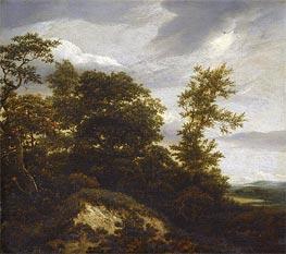 Ruisdael | A Wooded Dune Landscape, undated | Giclée Canvas Print