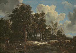 Edge of a Forest with a Grainfield, c.1656 by Ruisdael | Giclée Canvas Print
