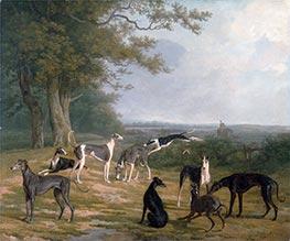 Nine Greyhounds in a Landscape, c.1807 by Jacques-Laurent Agasse   Giclée Canvas Print