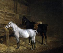 A Grey Pony and a Black Charger in a Stable, 1804 by Jacques-Laurent Agasse   Giclée Canvas Print