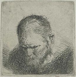 Jan Lievens | Bearded Man Looking Down, c.1631 | Giclée Paper Print