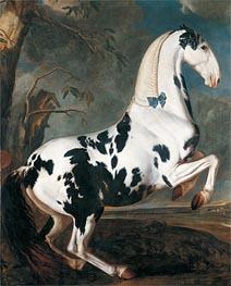 Johann Georg Hamilton | The Piebald Stallion at the Eisgruber Stud, 1700 | Giclée Canvas Print