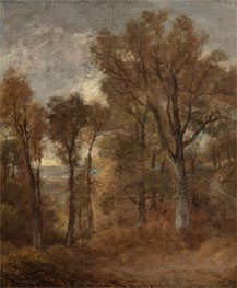 Woodland Scene Overlooking Dedham Vale, c.1802/03 by Constable | Giclée Canvas Print