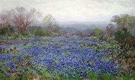 Field of Bluebonnets, undated by Julian Onderdonk | Giclée Canvas Print