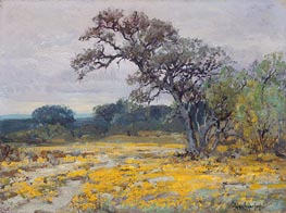 Coreopsis near San Antonio, Texas, 1919 by Julian Onderdonk | Giclée Canvas Print