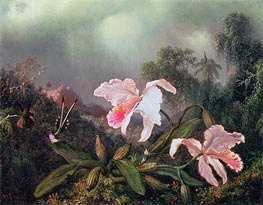 Martin Johnson Heade | Jungle Orchids and Hummingbirds | Giclée Canvas Print