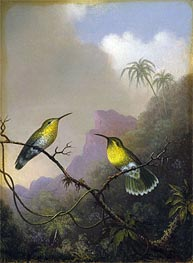 Martin Johnson Heade | Two Humming Birds: 'Copper-tailed Amazili', c.1865/75 | Giclée Canvas Print