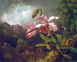 Martin Johnson Heade | Orchids in a Jungle, 1870s | Giclée Canvas Print