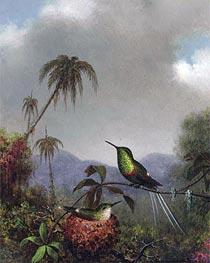 Martin Johnson Heade | Two Thorn-Tails (Langsdorffs Thorn-Tail Brazil), c.1864/65 | Giclée Canvas Print