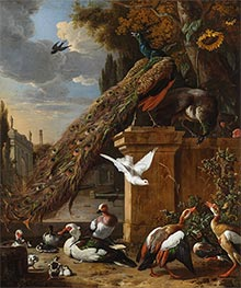 Peacocks and Ducks, c.1680 by Melchior d'Hondecoeter | Giclée Canvas Print