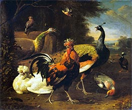 A Cockerel with other Birds, c.1668/95 by Melchior d'Hondecoeter | Giclée Canvas Print
