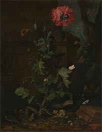Still Life with Poppy, Insects and Reptiles, c.1670 by van Schrieck | Giclée Canvas Print
