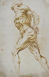 Rubens | Anatomical Study (A Nude Striding to the Right), undated | Giclée Paper Print