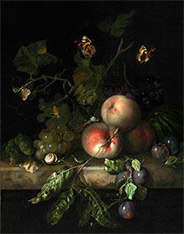 Peaches, Grapes and Plums with a Dragonfly, 1683 by Rachel Ruysch | Giclée Canvas Print