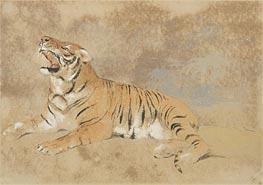 Landseer | Tiger, undated | Giclée Paper Print