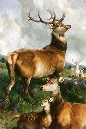 Deer of Chillingham Park, Northumberland, 1867 by Landseer | Giclée Canvas Print