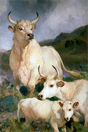 Wild Cattle of Chillingham, 1867 by Landseer | Giclée Canvas Print