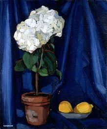 Lempicka | Bouquet of Hortensias and Lemon, c.1920/22 | Giclée Canvas Print