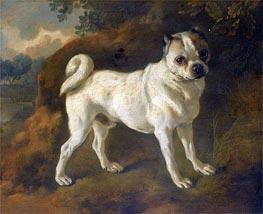 Gainsborough   A Pug, c.1780/85   Giclée Canvas Print