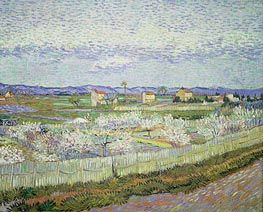 Vincent van Gogh | Peach Blossom in the Crau | Giclée Canvas Print