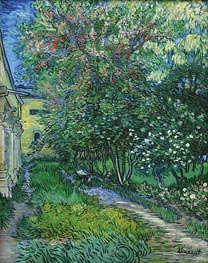 Vincent van Gogh | The Garden of the Asylum at Saint-Remy | Giclée Canvas Print