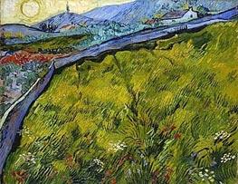 Vincent van Gogh   Field of Spring Wheat at Sunrise, 1889   Giclée Canvas Print