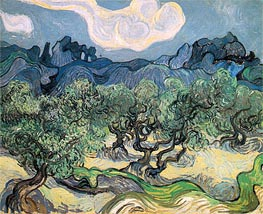 Vincent van Gogh   The Olive Trees, 1889   Giclée Canvas Print