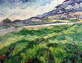 Vincent van Gogh   Green Wheat Field, 1889   Giclée Canvas Print