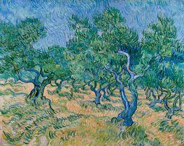 Vincent van Gogh | Olive Grove, 1889 | Giclée Canvas Print