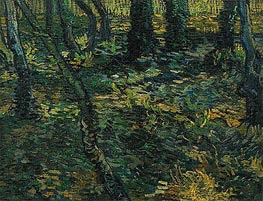 Vincent van Gogh | Undergrowth with Ivy, 1889 | Giclée Canvas Print