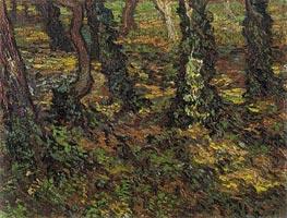 Vincent van Gogh | Tree Trunks with Ivy, 1889 | Giclée Canvas Print