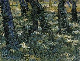 Vincent van Gogh | Undergrowth, 1889 | Giclée Canvas Print