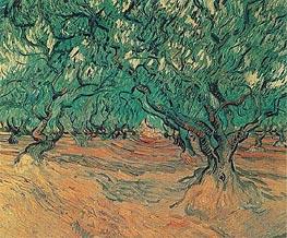 Vincent van Gogh | Olive Trees, 1889 | Giclée Canvas Print