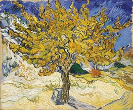 Vincent van Gogh | The Mulberry Tree | Giclée Canvas Print