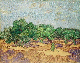Vincent van Gogh | Olive Orchard, 1889 | Giclée Canvas Print