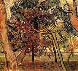 Vincent van Gogh | Study of Pine Trees, 1889 | Giclée Canvas Print