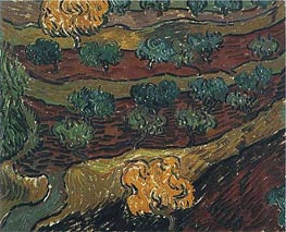 Vincent van Gogh | Olive Trees against a Slope of a Hill, 1889 | Giclée Canvas Print