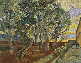 Vincent van Gogh | The Garden of Saint-Paul Hospital, 1889 | Giclée Canvas Print