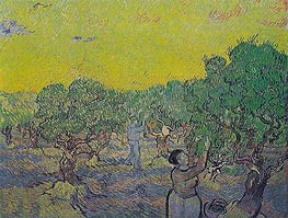 Vincent van Gogh | Olive Grove with Picking Figures, 1889 | Giclée Canvas Print