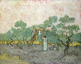 Vincent van Gogh | Olive Picking, 1889 | Giclée Canvas Print
